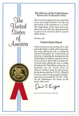 whats4_us_patent1